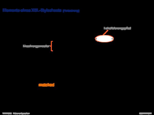 Die XSL-Familie Elemente eines XSL-Stylesheets
